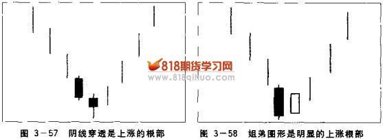 电路 电路图 电子 原理图 557_203